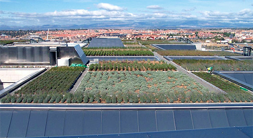 El tejado verde más grande de Europa se encuentra en Boadilla del Monte