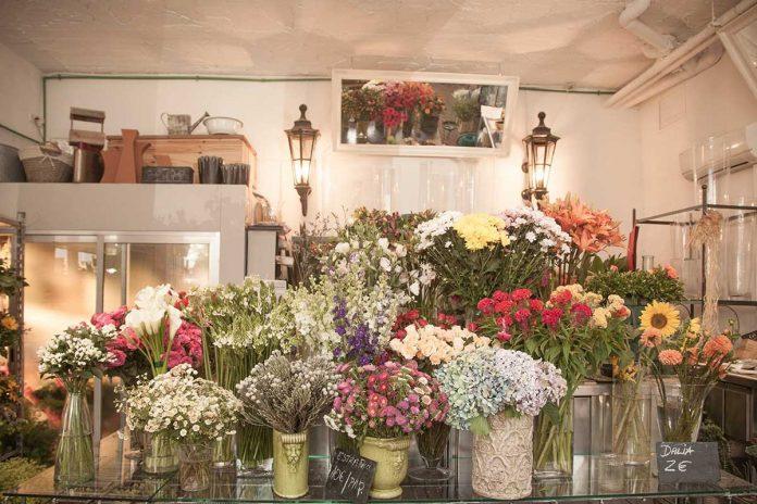Portada con flores variadas