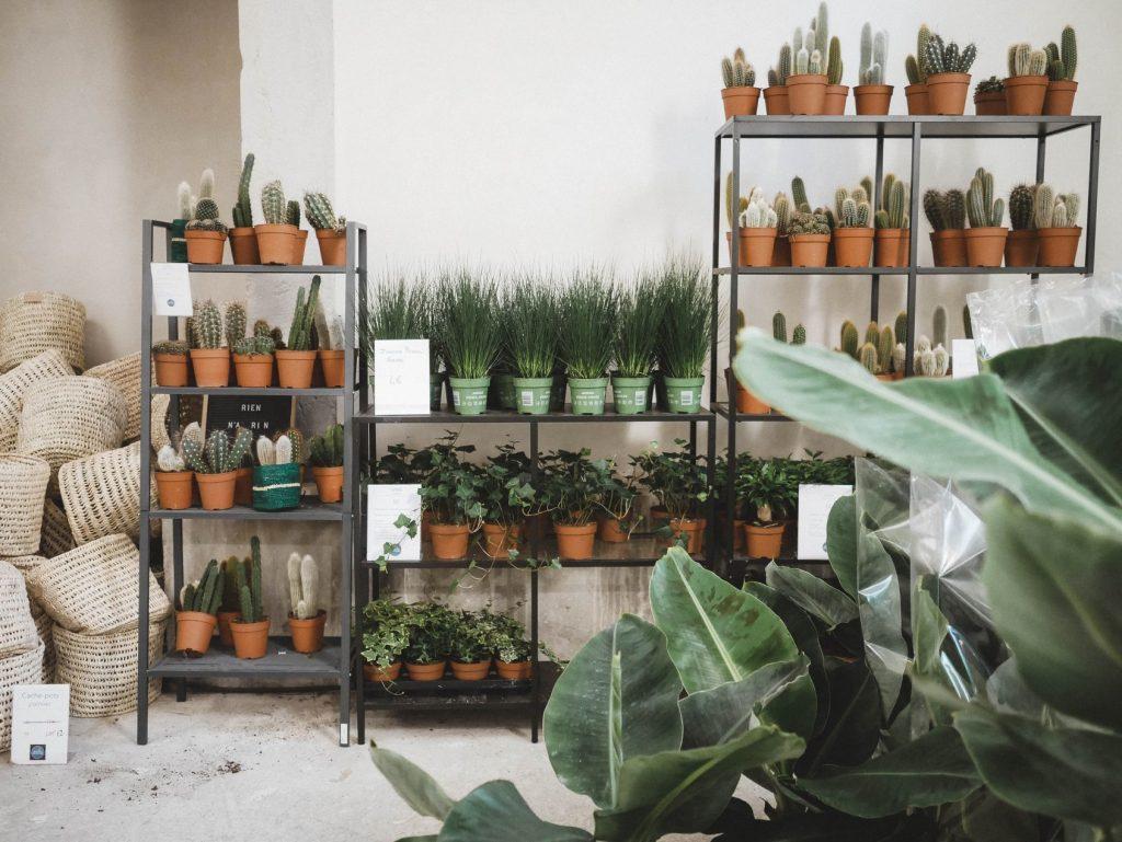 Maison Bouture invita a perderse en su Jardín Efímero de Madrid